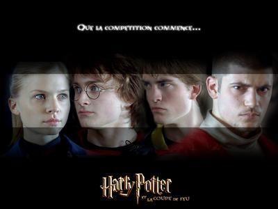 Harry potter and the goblet of fire - Harry potter et la coupe de feu cedric diggory ...